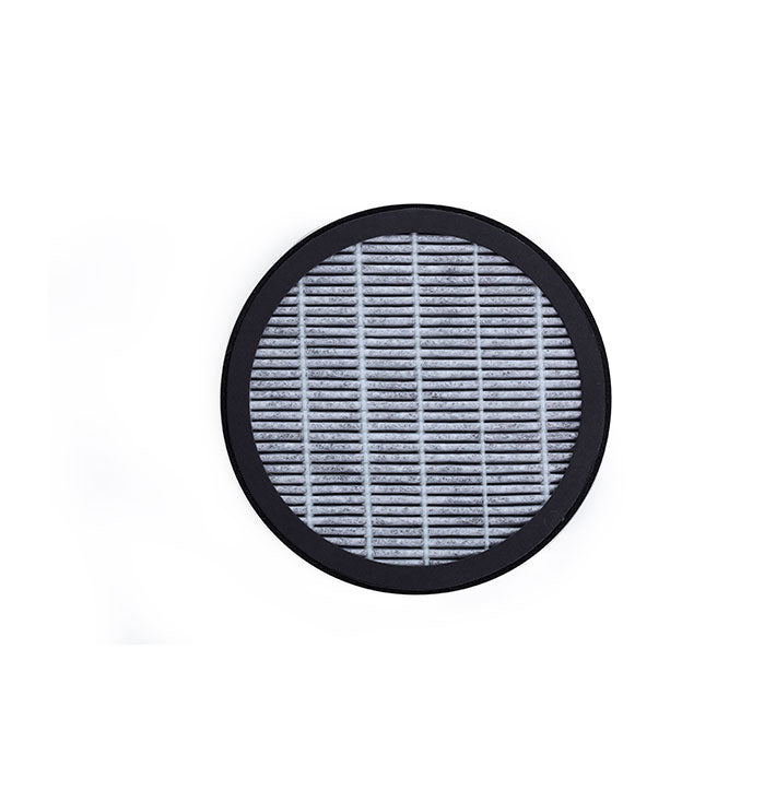 BE Car Replacement Filter (Pack of 2)