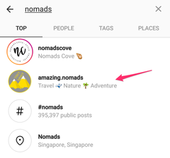 nomads search powered by the social butlerfly