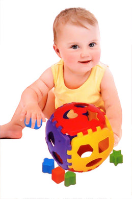 Shape Sorter Block Set | 24 Pcs | Non-Toxic