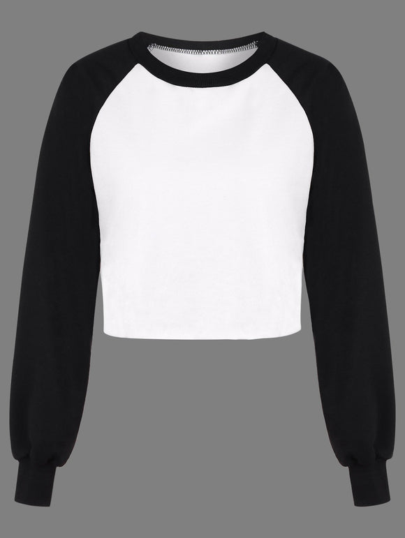 Color Block Panel Raglan Sleeve T-Shirt