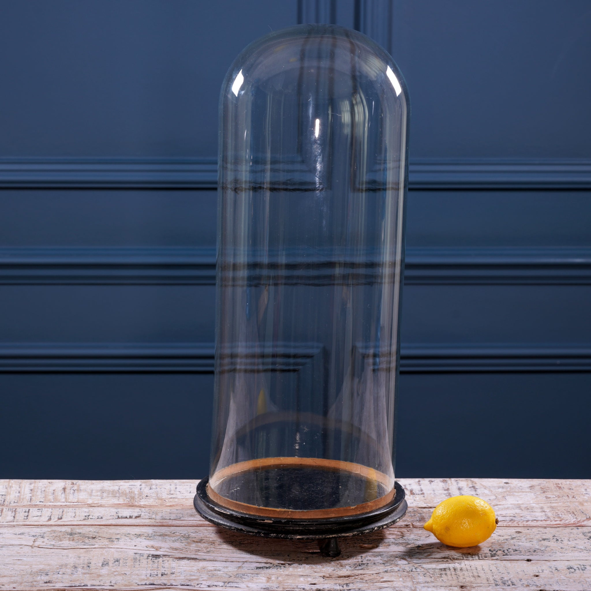 Tall Round Glass Cloche with Black Wooden Base