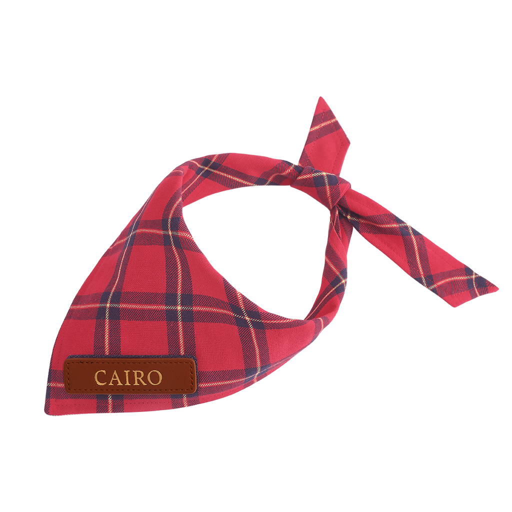 Red Plaid Dog Bandana