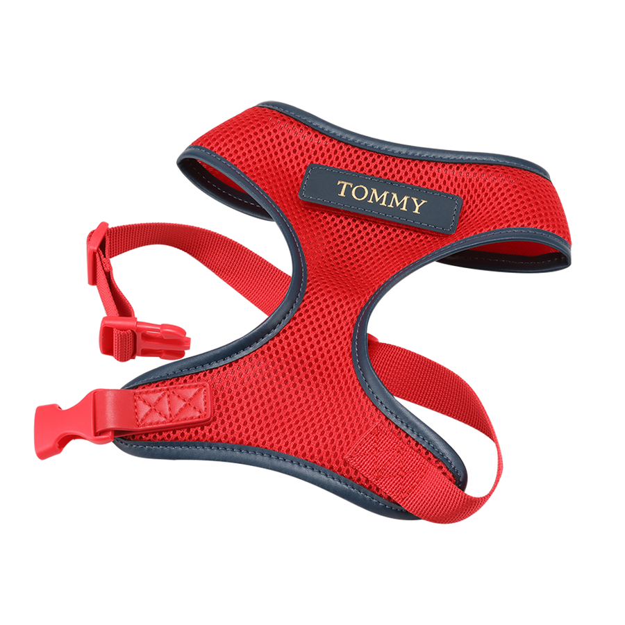 Red Dog Harness with Navy Trim