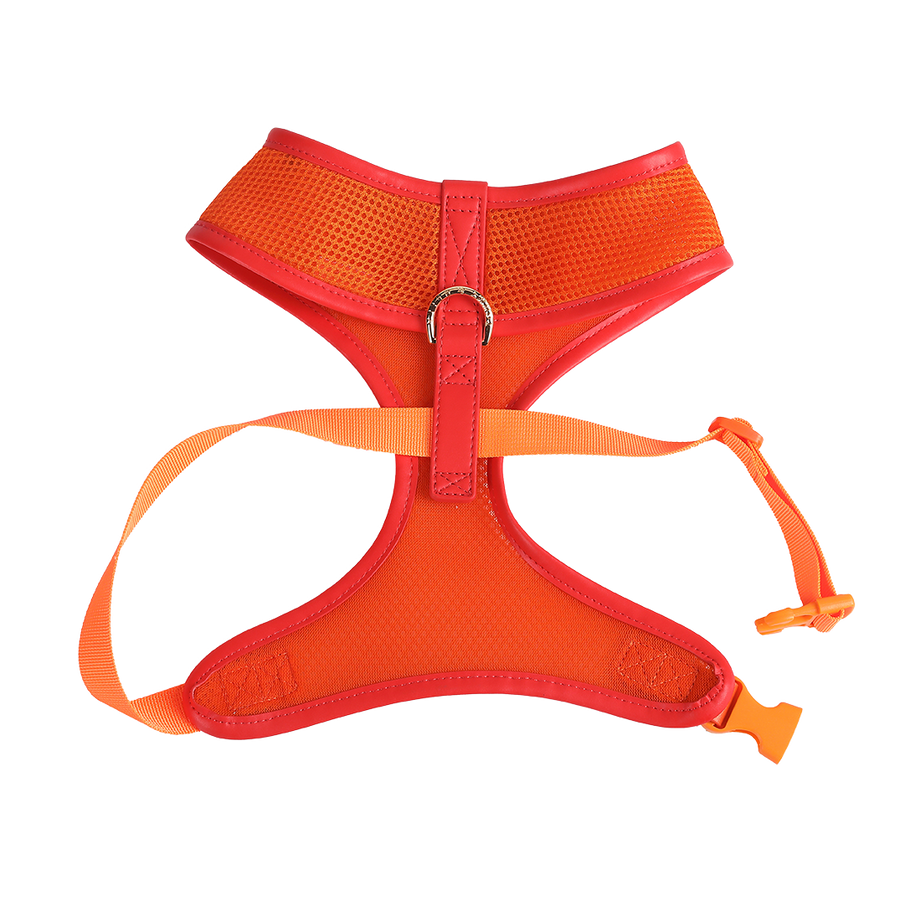 Orange Dog Harness with Red Trim