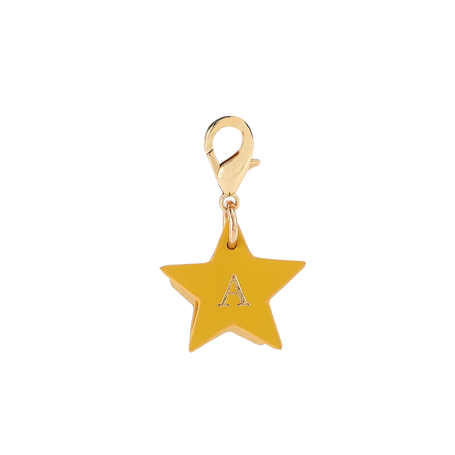 Star Charm with Metal ID Tag for Dog Collars