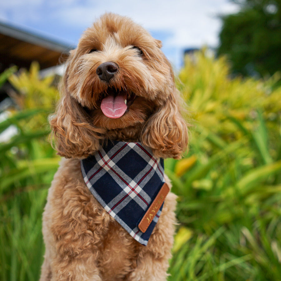 Navy Plaid Dog Bandana
