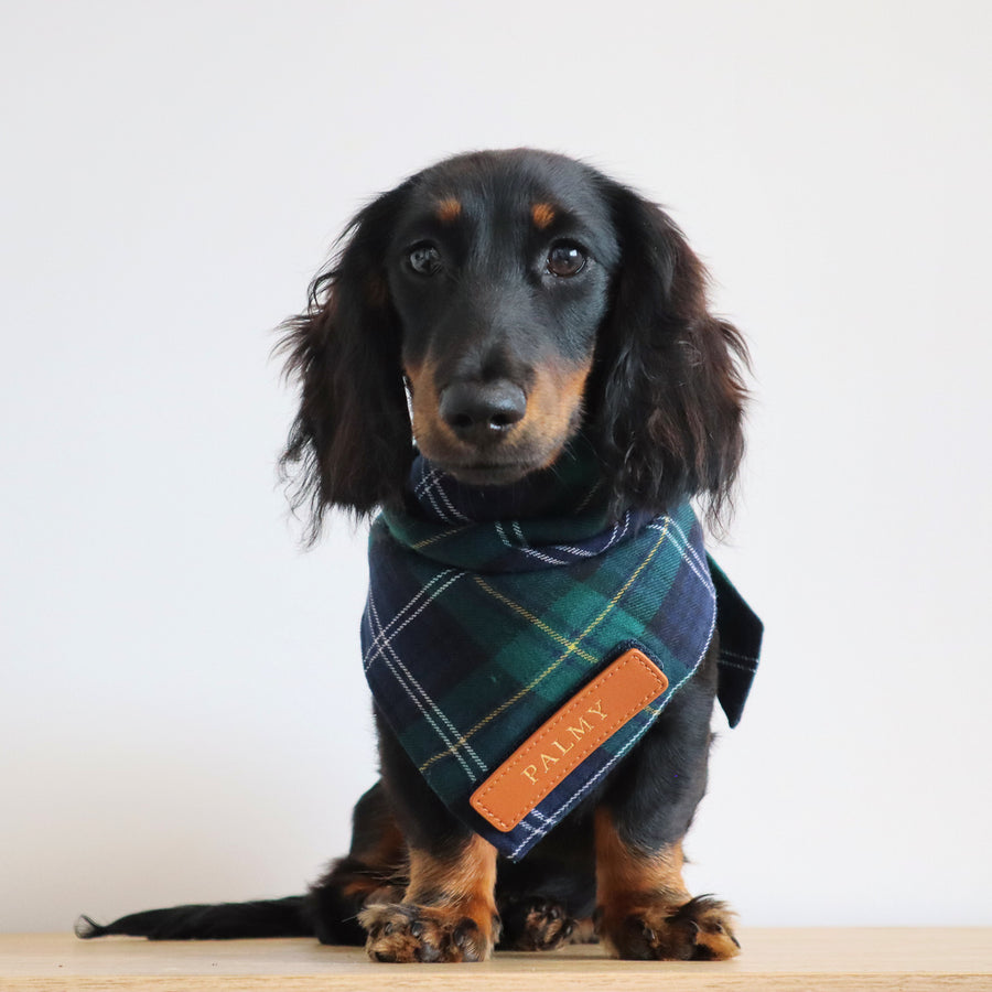 Navy & Green Tartan Dog Bandana