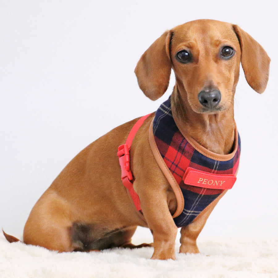 Navy & Red Tartan Fabric Dog Harness