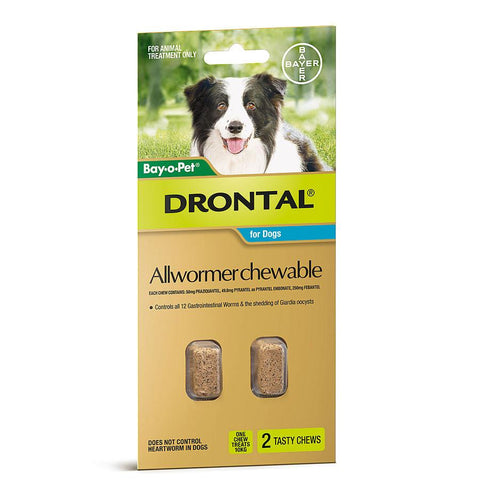 Drontal Allwormer Chewable For Dogs 22 lbs
