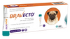 Bravecto Spot On Topical Small Dog 4.5-10kg (10-22lbs)