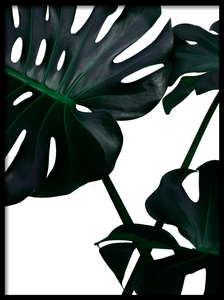 Close monstera I Poster