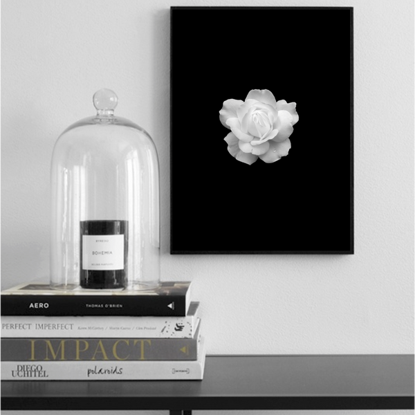 White Rose Poster - Høst design