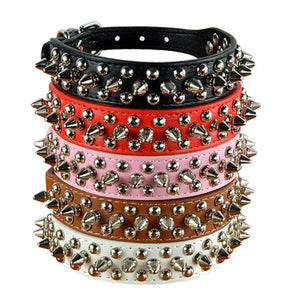 Premium Leather Spiky Studded Dog Collar | My Doggy & Me
