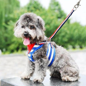 Cute Sailor Dog Costume & Lead | My Doggy & Me