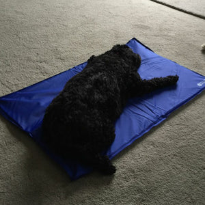 Essential Soft Cooling Dog Gel Mat | My Doggy & Me