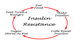 Vicious Cycle of Insulin Resistance