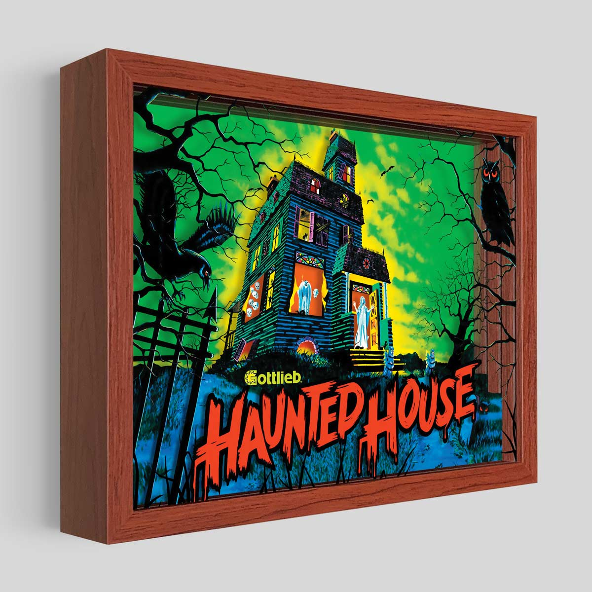 Haunted House Pinball Shadowbox Art