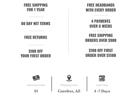 Free shipping, Net 60 terms, $100 off first order
