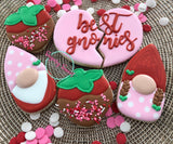 Beginners cookie decorating class. Saturday, February 1st; 11-1 pm