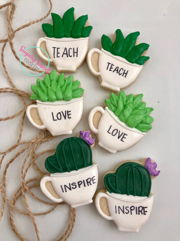 Teacher succulents (1 sleeve)