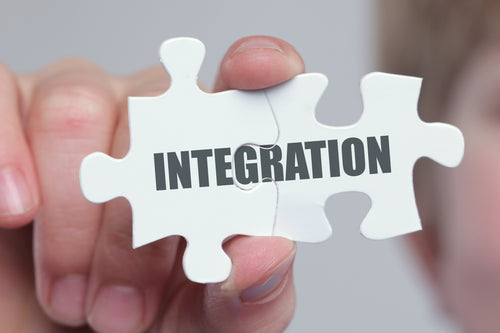 Integration Coaching: Calls+Online Course