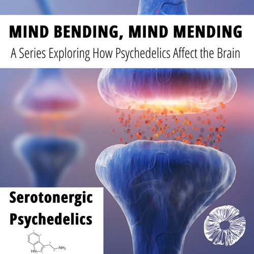 Mind Bending, Mind Mending - A Series Exploring How Psychedelics Affect the Brain: Serotonergic Psychedelics