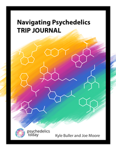 Psychedelic Trip Journal
