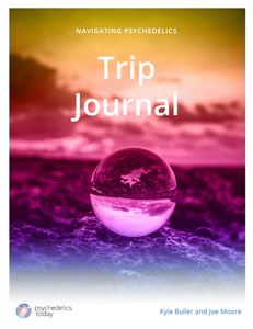 Navigating Psychedelics: Trip Journal (Digital Download)