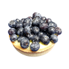 Fresh Blueberry Tartelette
