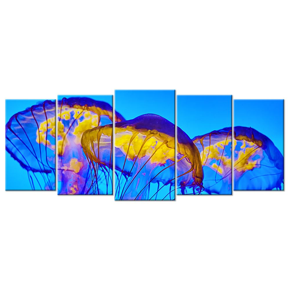 Sealife & Ocean Canvas: Beautiful Tube Jellyfish  - 5 panels XL