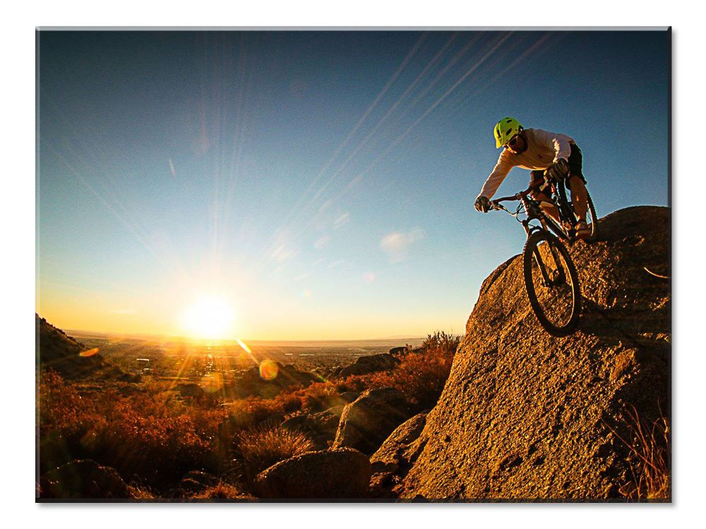 Mountain Bike Canvas - 1 panel XL