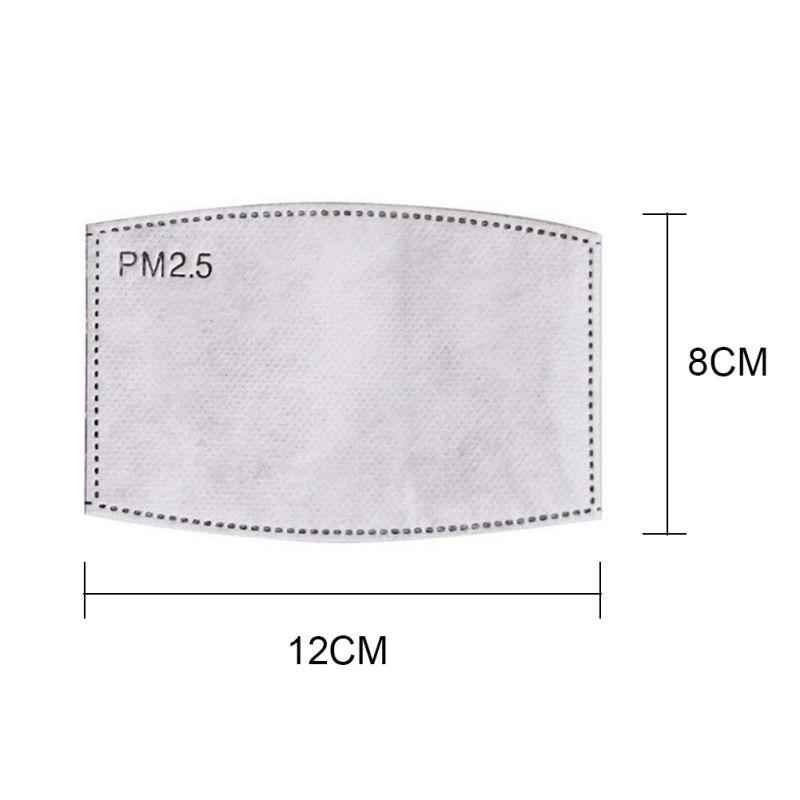 PM2.5 Activated Carbon Filter (10 pieces)