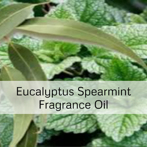 Eucalyptus Spearmint Fragrance Oil