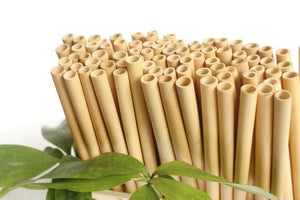 Straw, Bamboo - Tall - Straight