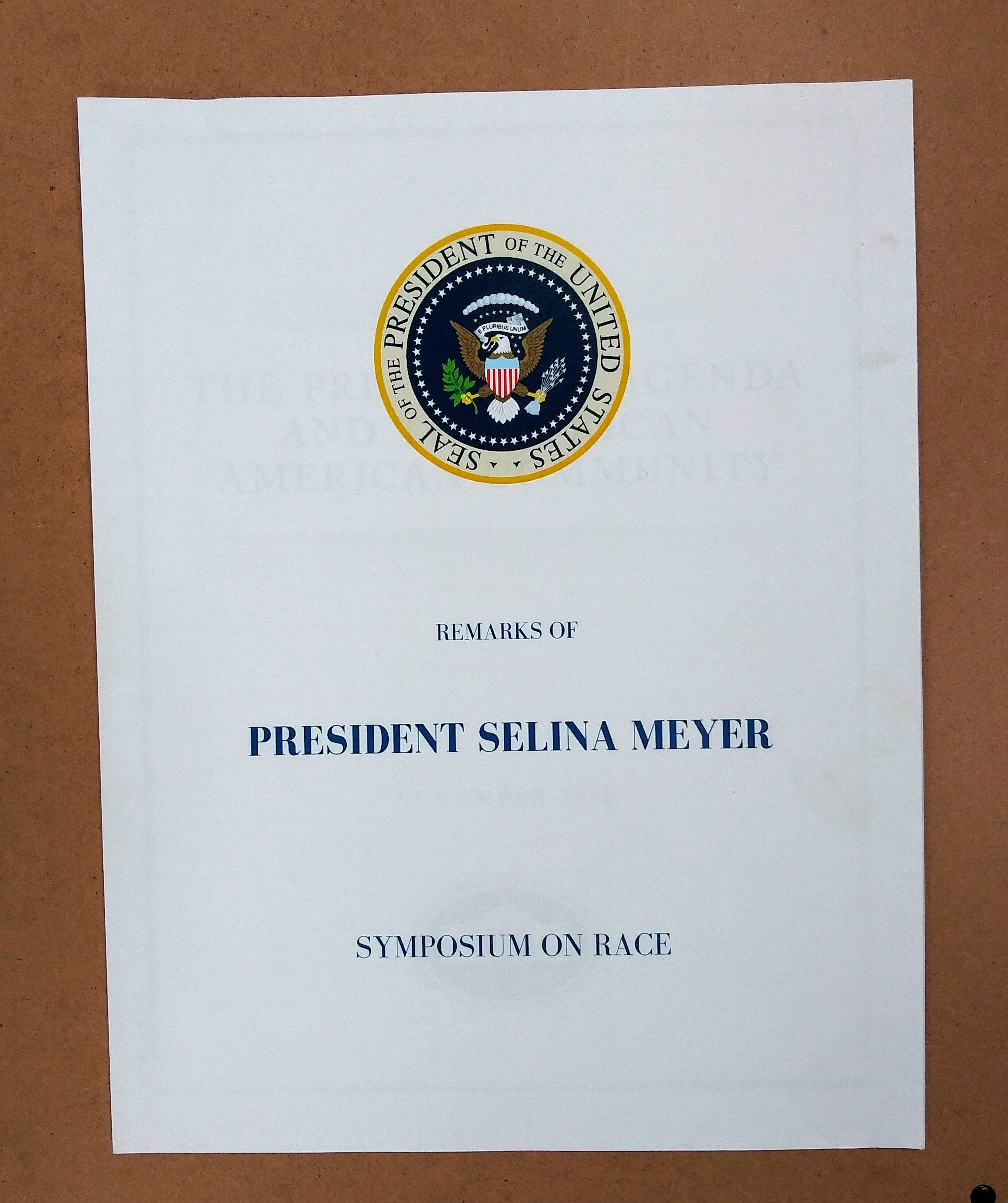 VEEP: President Selina Meyer's Symposium On Race