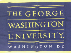 VEEP: The George Washington University Flag