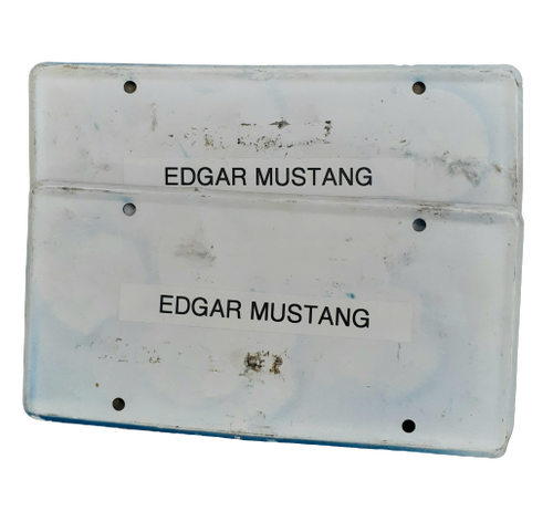 Screenbid Media Company, LLC. - You're The Worst: Edgar's HERO Mustang License Plates