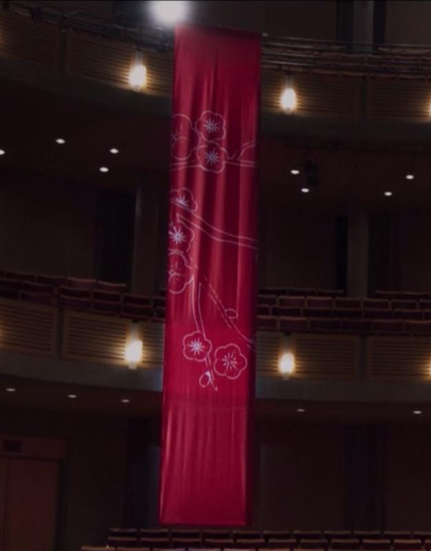 The Perfection: Opera House Banner