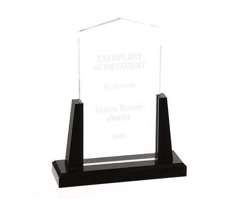 Under The Dome: Big Jim's Exemplary Achievement Award-1