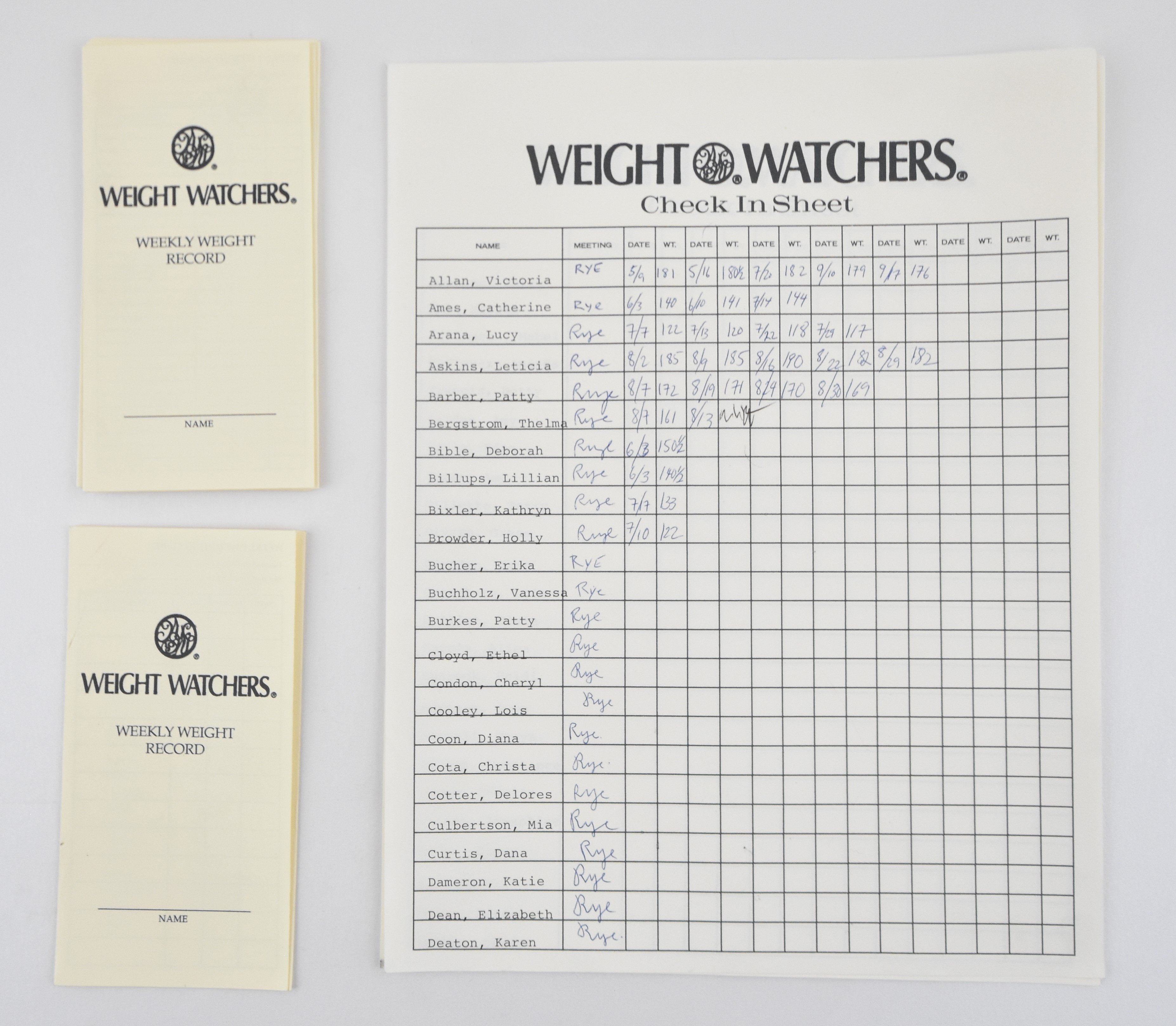 Mad Men: Weight Watchers Check In Sheet + Weekly Weight Records