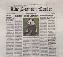 "Grown Ups 2: Stanton Ledger ""Tibetan Panda Captured"""
