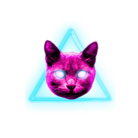 Kitty Illuminati