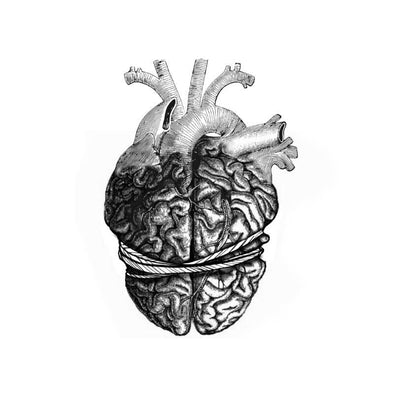 Head Vs. Heart
