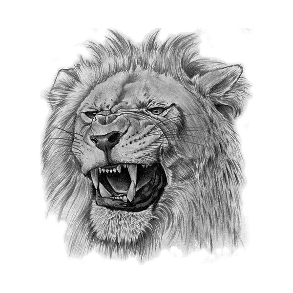 King Lion Lion Temporary Tattoo Momentary Ink