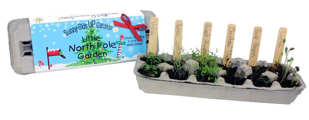 Grow your own North Pole