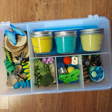 Insects Play Dough Sensory Boxes