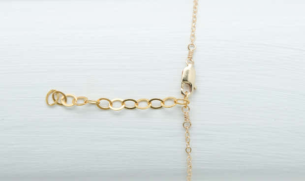 The Sea Shell Necklace 1