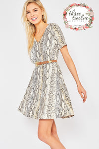 Salazar Swing Dress