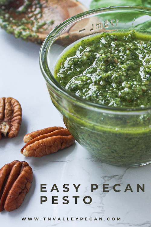 Pinterest pin with image of completed pecan pesto | Tennessee Valley Pecan Company