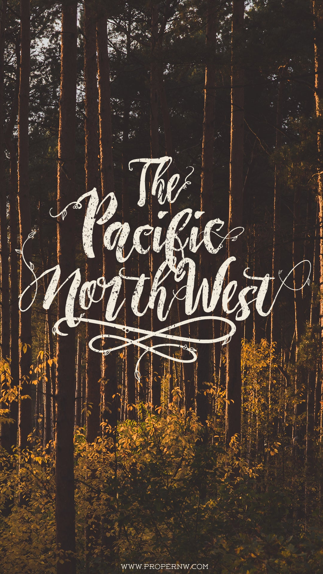 PNW Wallpaper Wednesday 7